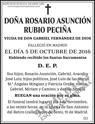 Rosario Asunción Rubio Peciña